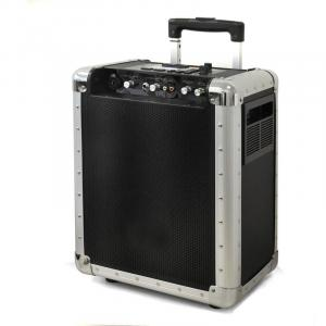 PA-200 Mobile DJ-PA-Anlage Trolley USB-SD-MP3 Akku