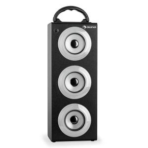 Beachboy XXL Bluetooth-Lautsprecher silber USB SD AUX UKW Silber | XXL