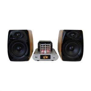 MAD-TA15BT Vintage-Audiosystem Röhrenverstärker 2x30W RMS Bluetooth USB