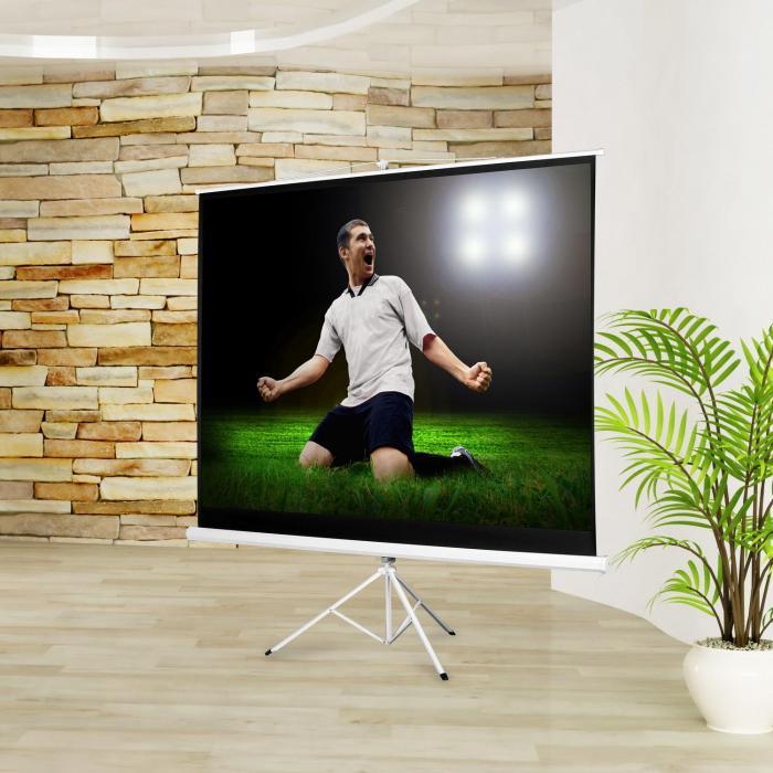 Beamer Stativ-Leinwand 200x150cm Heimkino Projektor HDTV 254cm 4:3